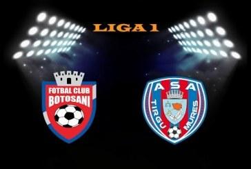 FC Botosani vs ASA Targu Mures – Mizam pe moldoveni!