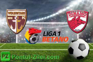 Ponturi FC Voluntari vs Dinamo fotbal 27 aprilie 2019 Liga I Betano Romania