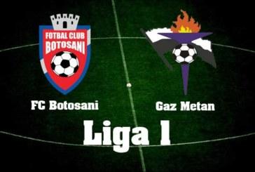 Ponturi FC Botoșani vs Gaz Metan 2 iunie 2018 Liga I Betano
