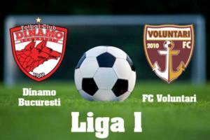Ponturi Dinamo vs FC Voluntari fotbal 28 iunie 2020 Liga I