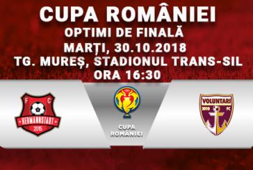 Ponturi pariuri FC Hermannstadt vs FC Voluntari – Cupa României – 30 octombrie 2018