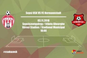 Ponturi pariuri Sepsi vs Hermannstadt Liga I Betano Romania 3 noiembrie 2018