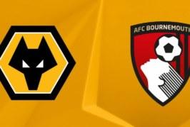 Ponturi pariuri Wolves vs Bournemouth – Anglia Premier League 15 decembrie 2018