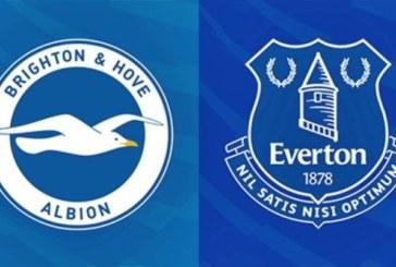 Ponturi Brighton vs Everton fotbal 29 decembrie 2018 Premier League Anglia