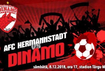 Ponturi pariuri Hermannstadt vs Dinamo – Liga 1 Romania 8 decembrie 2018