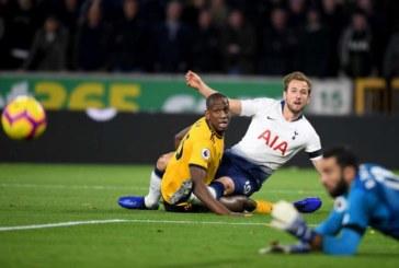 Ponturi pariuri Tottenham vs Wolves – Premier League 29 decembrie 2018