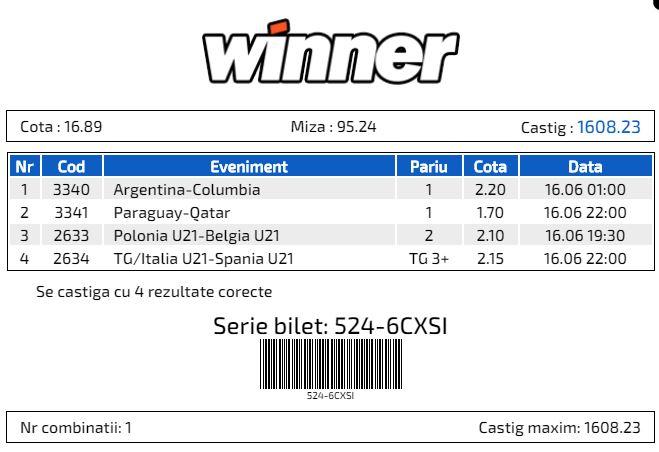 Winner - Bilet Cotă Mare pariuri