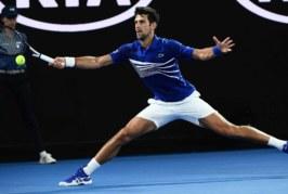 Ponturi Novak Djokovic vs Denis Shapovalov – tenis 19 ianuarie 2019 Australian Open