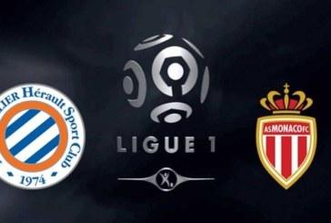 Ponturi Montpellier vs Monaco fotbal 10 februarie 2019 Ligue I Franta