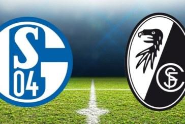 Ponturi Schalke – Freiburg fotbal 16-februarie-2019 Germania Bundesliga