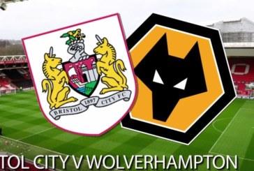 Ponturi Bristol vs Wolverhampton fotbal 17 februarie 2019 Cupa Angliei
