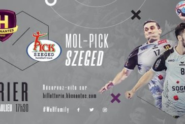 Ponturi Pick Szeged – Nantes handbal 23-februarie-2019 Champions League