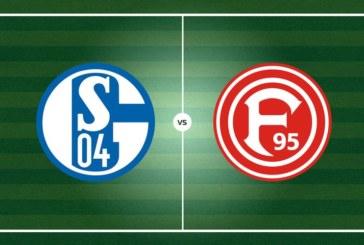 Ponturi Schalke vs Fortuna Dusseldorf fotbal 9 noiembrie 2019 Bundesliga Germania