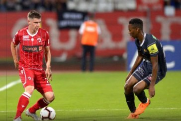 Ponturi Dinamo vs FC Hermannstadt 29-martie-2019 Liga 1