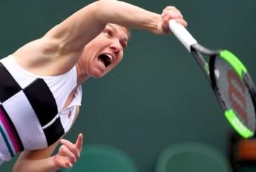 Ponturi Marketa Vondrousova – Simona Halep tenis 12-martie-2019 WTA Indian Wells