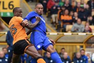 Ponturi Wolves vs Cardiff 02-martie-2019 Premier League
