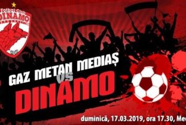 Ponturi Gaz Metan Medias vs Dinamo fotbal 17 martie 2019 Liga I Betano