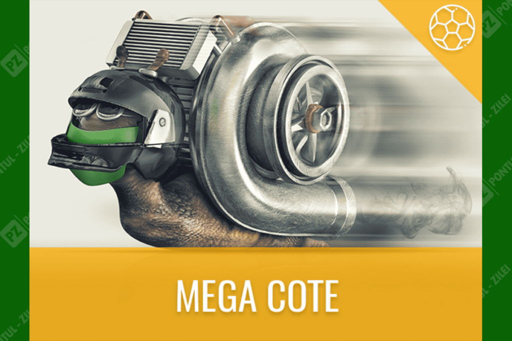 Mega Cote Baumbet