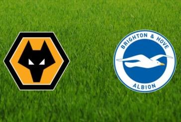 Ponturi Wolverhampton vs Brighton & Hove fotbal 20 aprilie 2019 Premier League Anglia