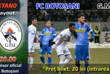 Ponturi Botosani-Gaz Metan Medias fotbal 17-mai-2019 playout Liga 1