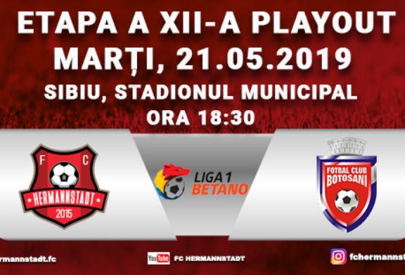 Ponturi Hermannstadt-Botosani fotbal 21-mai-2019 Liga 1