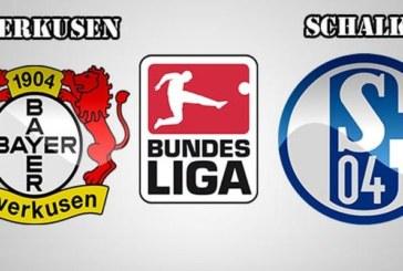 Ponturi Bayer Leverkusen vs Schalke fotbal 11 mai 2019 Bundesliga Germania