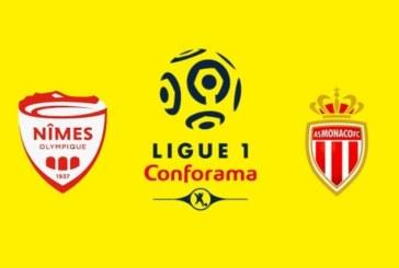 Ponturi Nimes-Monaco fotbal 11-mai-2019 Ligue 1