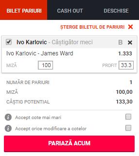 pont pariuri Ivo Karlovic vs James Ward
