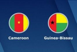 Ponturi Camerun vs Guinea-Bissau fotbal 25 iunie 2019 Cupa Africii pe Națiuni