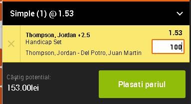 pont pariuri Jordan Thompson vs Juan Martin del Potro