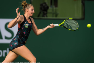 Ponturi Ysaline Bonaventure-Kristyna Pliskova tenis 17-iulie-2019 WTA Bucuresti