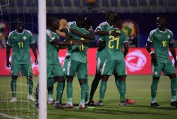 Ponturi Senegal-Tunisia fotbal 14-iulie-2019 semifinale Cupa Africii