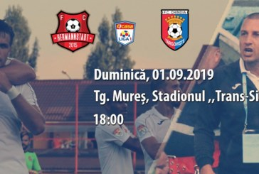 Ponturi Hermannstadt-Chindia Targoviste fotbal 1-septembrie-2019 Liga 1