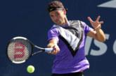 Ponturi Grigor Dimitrov – Ugo Humbert tennis 29-octombrie-2019 ATP Paris