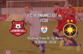 Ponturi Hermannstadt-FCSB fotbal 26-octombrie-2019 Liga 1