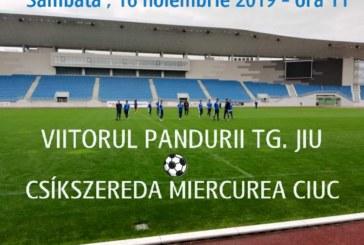 Ponturi Viitorul Pandurii Tg Jiu vs Csikszereda fotbal 16 noiembrie 2019 Liga 2 Romania