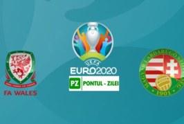 Ponturi Tara Galilor vs Ungaria fotbal 19 noiembrie 2019 Preliminarii Euro 2020