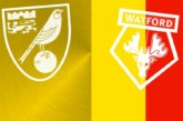 Ponturi Norwich-Watford fotbal 8-noiembrie-2019 Premier League