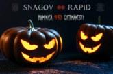 Ponturi Sportul Snagov-Rapid fotbal 3-noiembrie-2019 Liga 2