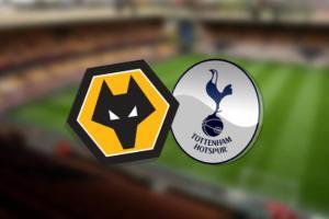 Ponturi Wolverhampton vs Tottenham fotbal 15 decembrie 2019 Premier League