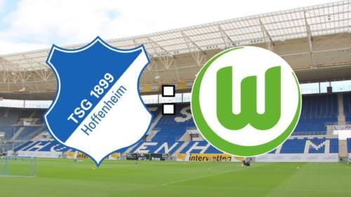 Ponturi Hoffenheim-Wolfsburg fotbal 15-februarie-2020 Bundesliga