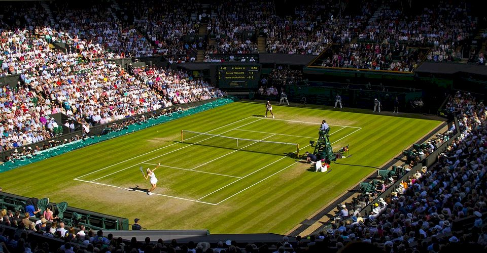 Wimbledon. Cea mai prestigioasă competiție de tenis din lume, câștigată de Halep în 2019