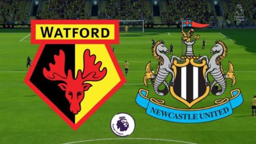 Ponturi Watford vs Newcastle fotbal 11 iulie 2020 Premier League
