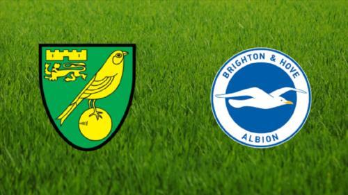 Ponturi Norwich-Brighton fotbal 4-iulie-2020 Premier League