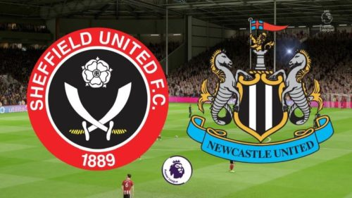 Ponturi Sheffield United vs Newcastle fotbal 12 ianuarie 2021 Premier League