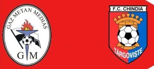 Ponturi Chindia Targoviste vs Gaz Metan Medias fotbal 4 mai 2021 Liga 1